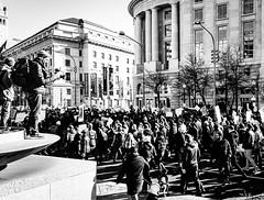 2017.02.04 No Muslim Ban 2, Washington, DC USA 00523
