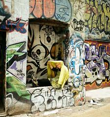 Hide 'n Seek (Georgie_grrl) Tags: torontophotowalks social photographers friends outing topw2017rs graffitialley graffiti streetart expression creative colourful andrew friend pentaxk1000 rikenon12828mm alley