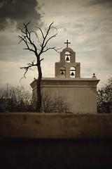 San Xavier del Bac (Turn the Barrel) Tags: mission san xavier del bac tucson arizona usa catholic chapel church reservation exterior gloomy cloudy architecture foliage cactus purple macro