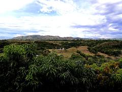 Paisaje del Tolima (SkyBurj) Tags: naturaleza verde nature landscape colombia paisaje cielo choza tolima