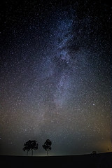 Großmugl, Lower Austria. (Tobias Danz) Tags: nightphotography trees sky nature night canon way stars landscape star austria long exposure view darkness outdoor perspective atmosphere iso milky starry milkyway 6d grosmugl