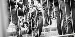 Brighton, Ace run (alexandre.hoste) Tags: uk london leather bike club race concentration cafe ace meeting norton harley harleydavidson triumph moto motorcycle angleterre caferacer kawasaki racer londre mythique ahphoto alexandrehoste royaumesuni