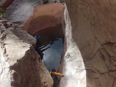 grand canyon2015 083