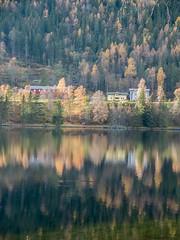 Norway (Pieter Mooij) Tags: autumn norway reflections norge fuji herbst herfst norwegen fujifilm fjord noorwegen yellowtrees fujix20 fujifilmx20