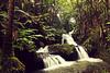 Waterfall- (The Creaking Door) Tags: hawaii waterfall peace tranquility thebigisland holiday2012