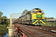 "2015_11_21_C510-C501MurrayRiverBridge9L82 (Dean ""O305"" Jones) Tags: murrayriver espee c510 steamrail c501 heritagetrain arhsact greentrains csonthenortheast vlinecclass 9l82"