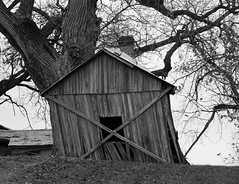 Brussels Bent Barn (Wits End Photography) Tags: wood old brussels blackandwhite bw white plant black building tree green texture abandoned broken nature monochrome architecture barn rural america outside grey blackwhite illinois midwest exterior outdoor decay farm country gray neglected twist warp structure pale falling faded forgotten american worn weathered bent discarded forsaken leaning rejected slant decayed bleached droop faint lean discolored subside