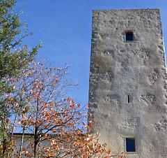 Torre Guinigi - Laterina (fotografia per passione) Tags: tuscany toscana toscane arezzo valdarno torreguinigi laterina marksoetebierphotography