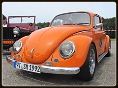 VW Beetle (v8dub) Tags: auto old classic car vw bug volkswagen schweiz switzerland automobile suisse beetle automotive voiture german cox oldtimer oldcar collector käfer coccinelle kever fusca aircooled wagen pkw klassik maggiolino bleienbach bubbla worldcars