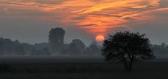 November Blues - explore 14. Nov. 2015 (Nephentes Phinena ☮) Tags: november autumn sunset mist fall fog sonnenuntergang herbst nikond300s