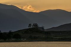 Glen Cannich (prajpix) Tags: trees sky lake mountains water clouds scotland highlands glen hills pines valley loch munros gloaming lochan strath