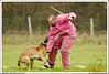 First Von King Von Backdraft RINALDI V  -0861 (Fab Photos Canine et Sportive) Tags: king von first backdraft