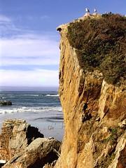 Sentinals (Starkrusher) Tags: seagulls oregon pacificocean oregoncoast bluff seabird sentinal ontheocean