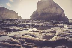 shark fin reflection (j j miller) Tags: ocean california coast rocks davenport hwy1 californiacoast sharkfin rockstacks sharkfincove