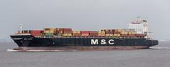 MSC ALEXA (Mark Hobbs@Chepstow) Tags: ship portishead avonmouth severnbridge royalportbury