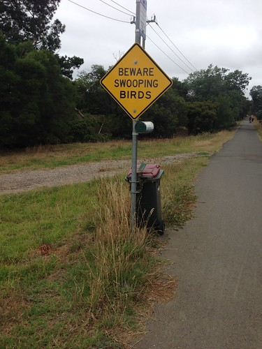 'Beware swooping birds' sign on Bellarine Rail Trail