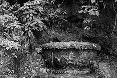 IMG_6569 (ricval57) Tags: iguazu cataratas waterfalls canont2i tamron2875mm