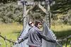 Swing bridge sista's (Ian@NZFlickr) Tags: sisters swing bridge pose wires crossed greenstone river queenstown nz