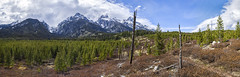 Tetonic Panorama (Clint Koehler) Tags: nikond700 wyoming tetons grandteton hiking outdoors landscape panorama trails grandtetonnationalpark outdoor mountain 1635