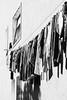 And it's another day of sun! (lorenzoviolone) Tags: bw blackwhite blackandwhite d5200 dslr monochrome nikon nikond5200 polaroid665 reflex vsco vscofilm window clothes drying dryingclothes laundry laundryday residential roadtrip:tuscany=jan2017 streetphoto streetphotobw streetphotography monteargentario provinciadigrosseto italy