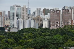 DSC_1432 (Machtigen) Tags: selva pedra city são paulo ibirapuera