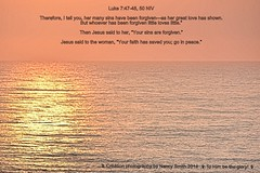 Luke 7:47-48, 50 NIV (Explore 2017-01-22) (NancySmith133) Tags: godswordsonmyphotos scripture