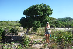 Laurie + Tree - Barbuda (hedonism1) Tags: hedonism bobmackie lauriemackie outboundyachts