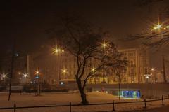 A Single, Solitary Tree (Roblawol) Tags: centraleurope cracow dawn earlymorning europe evening freezing icy krakow longexposure night poland snow snowy tree trees winter krakowglowny