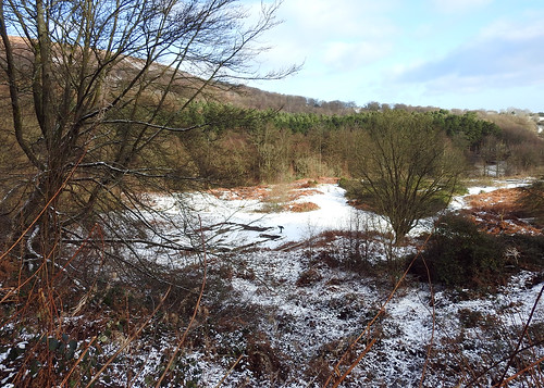 Engine House Foundations, Mineslope Adit, Blaen Bran, Upper Cwmbran 13 January 2017