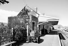 DUNSTER STATION (tommypatto : ~ IMAGINE.) Tags: dunster railways steam railwaystations mono blackandwhite somerset westsomersetrailway
