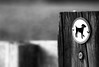 No dogs allowed. (Dikke Biggie.) Tags: 52in2017 7domesticanimal huiselijkdier dog hond nodogsallowed verbodenvoorhonden happyfencedfriday hff fence fenced fencing fencedfriday hek hekwerk omheining friday vrijdag closeup detail macro 100mm f28 canon canonnl dof depthoffield scherptediepte bokeh blackandwhite bw black white zwartwit zw zwart wit monochrome monochroom canoneos450d dgawc