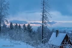 A little house in the mountains... (aleksandarbozhkov) Tags: sigma 1750mm f28 nikon d5300 winter fairytale trees mountain vitosha bulgaria hoarfrost nature house sunset colors