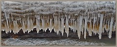 Nature's Keyboard (MoodyGoat) Tags: winter ice lakemichigan icicles ibsp illinoisbeachstatepark
