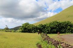 Hanga Roa, Easter Island (sj.fisher) Tags: easter island rano raraku