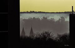 les deux clochers de l'église de melun -The two steeples of the church of melun (serial n° N6MAA10816) Tags: desaturation arbre tree jaune yellow matin morning