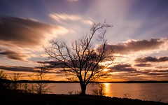 Sunset Tree (cwhitted) Tags: jordanlake beverettjordanlake sunsets sunset tree chathamcounty northcarolina us samsung samsungnx1855mmf3556 nx300 samsungnx300 longexposure