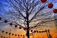 Sundial Oriental Docklands (eyeamsterdam) Tags: sundial oriental amsterdam easterndocklands moody sunset lampion tree