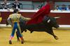 DSC_9512.jpg (josi unanue) Tags: animal blood spain bull arena bullfighter sansebastian esp toro traje asta sangre espada bullring unanue guipuzcoa matador torero tauromaquia sufrimiento cuerno banderilla banderilero