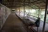 IMG_2465 (Cthonus) Tags: geotagged malaysia borneo longhouse rungus runguslonghouse