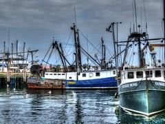 (mahler9) Tags: harbor pier boat fishing provincetown capecod newengland september wharf hdr macmillan jaym 2015 mahler9