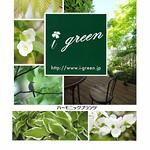 生物多様性に配慮した緑化植物提案手法の写真