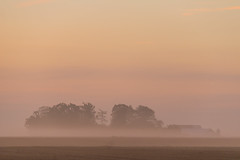 Misty morning with soft colors
