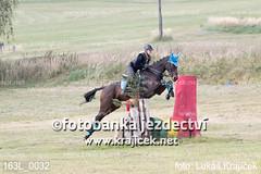 163L_0032 (Lukas Krajicek) Tags: military czechrepublic cz kon koně vysočina vysoina southbohemianregion blažejov dvoreček všestrannost dvoreek