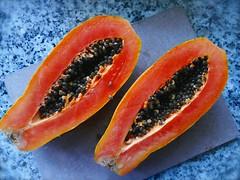 papa ya (Riex) Tags: food orange fruit papaya seeds tropical nourriture graines papaye explored leicadcvarioelmarit fz1000