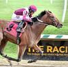 "2015-11-11 (26) r4 Victor Carrasco on #8 Marengo Road (JLeeFleenor) Tags: photos photography md marylandracing marylandhorseracing laurelpark jockey جُوكِي ""赛马骑师"" jinete ""競馬騎手"" dżokej jocheu คนขี่ม้าแข่ง jóquei žokej kilparatsastaja rennreiter fantino ""경마 기수"" жокей jokey người horses thoroughbreds equine equestrian cheval cavalo cavallo cavall caballo pferd paard perd hevonen hest hestur cal kon konj beygir capall ceffyl cuddy yarraman faras alogo soos kuda uma pfeerd koin حصان кон 马 häst άλογο סוס घोड़ा 馬 koń лошадь bay winner maryland"