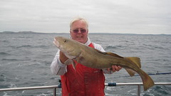 "Roy Shipway with a nice October Cod • <a style=""font-size:0.8em;"" href=""http://www.flickr.com/photos/113772263@N05/22487844502/"" target=""_blank"">View on Flickr</a>"