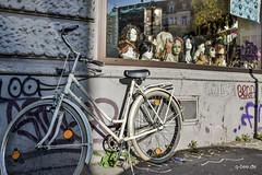 BEIGE (Q-BEE) Tags: park autumn trees bike colours laub herbst rad cologne köln leafs spaziergang