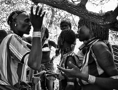 Negotiating a Whipping, Hamer Ethiopia (Rod Waddington) Tags: africa blackandwhite woman man female outdoors mono jumping african traditional group ceremony culture valle tribal bull southern valley whip warrior afrika omovalley ethiopia tribe ethnic nations cultural hamar hamer ethnicity afrique whipping ethiopian omo etiopia negotiate negotiating ethiopie etiopian