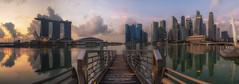 Welcome To The Jungle (Jansen Chua) Tags: morning panorama sunrise singapore cityscape skyscrapers jetty goldenhour jubileebridge centralbusinessdistrict marinabaysands marinabayfinancialcentre jansenchuaphotography