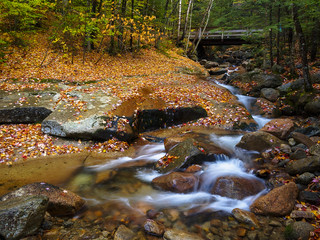 Flume Brook in Autumn